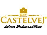 Castelvej logo